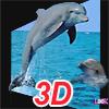 3D Gerçek Yunus Puzzle Oyunu